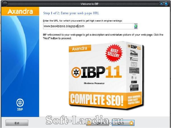 Internet Business Promoter 11.6 Business Edition