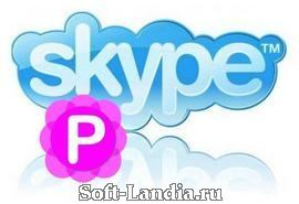Pamela for Skype Professional Edition